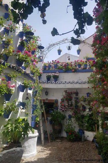 Patio cordobés repleto de macetas azules con flores que destacan sobre las paredes blancas. En medio de este vemos un precioso pozo de agua.