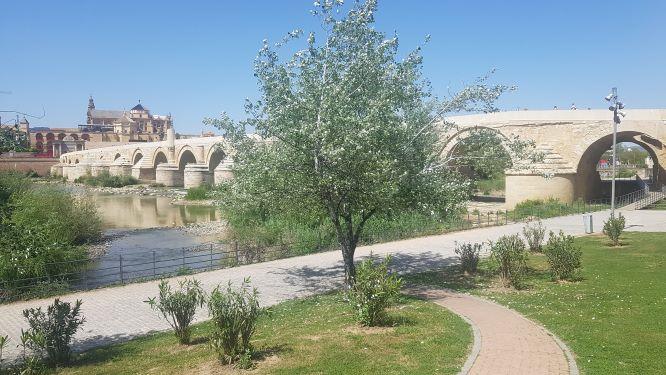 Precioso puente romano de piedra, que corresponde a uno de los lugares más importantes que ver en Córdoba.