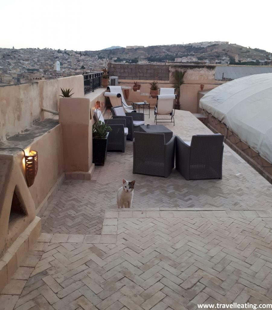 Azotea del Riad Jamai en Fez.