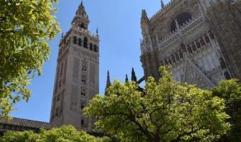 Torre de la Giralda des del precioso Patio de los Naranjos, dos de los imprescindibles de Sevilla.