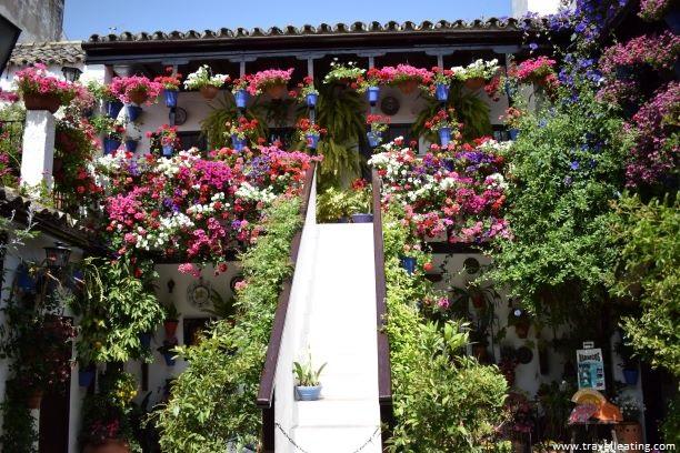 Patio cordobés con una escalera en medio que sube al piso de arriba y repleto de macetas con flores. Es uno de los patios más premiados de Córdoba y por tanto uno de los imprescindibles que ver.