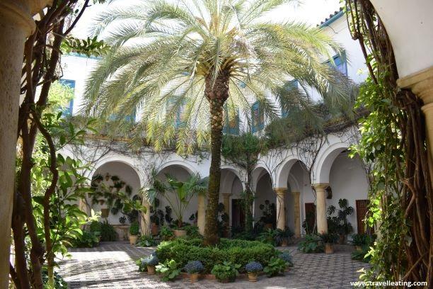 Precioso patio interior de una casa blanca con una palmera en medio y muchísimas flores.