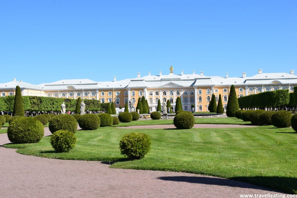 Parque de estilo francés, muy verde, cubierto de hierba y con muchísimos setos con forma redondeada. En el fondo vemos la fachada del hermoso Palacio Peterhof.