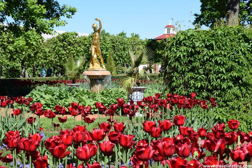 Hermoso jardín repleto de rosas rojas con una escultura dorada de un hombre desnudo en medio.