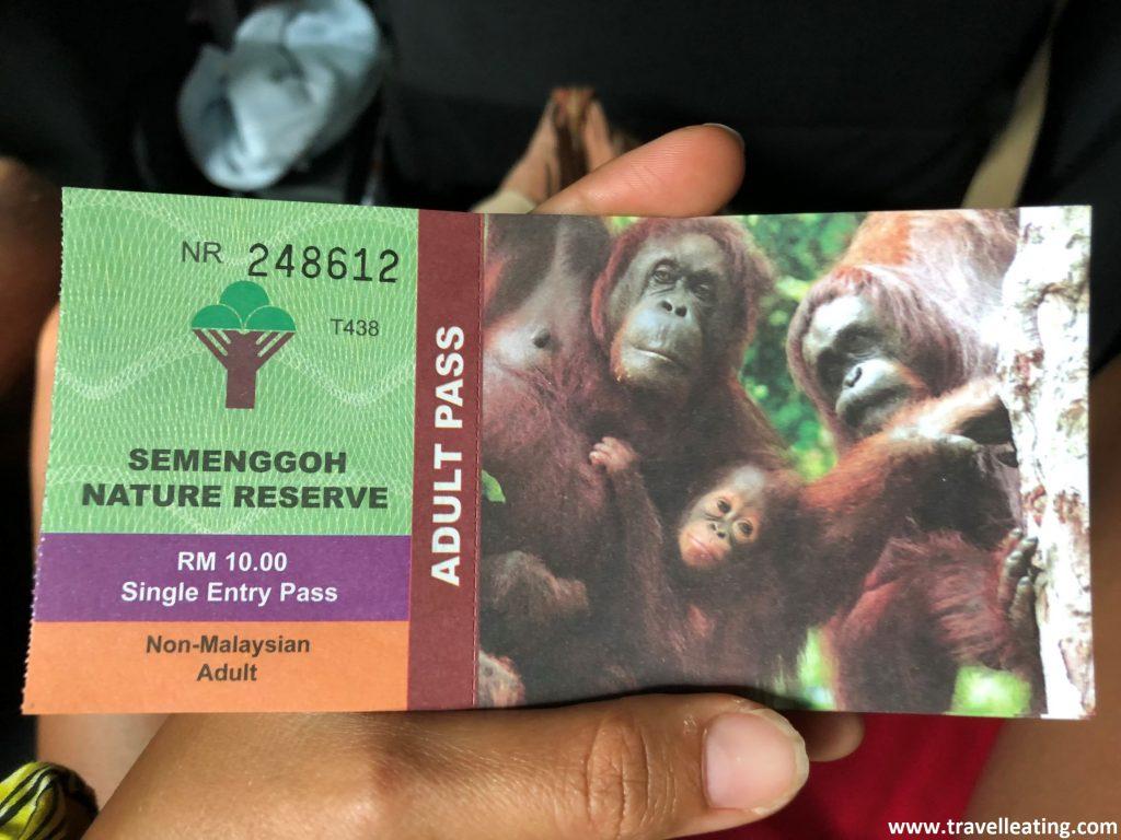 Entrada a Semenggoh Nature Reserve.