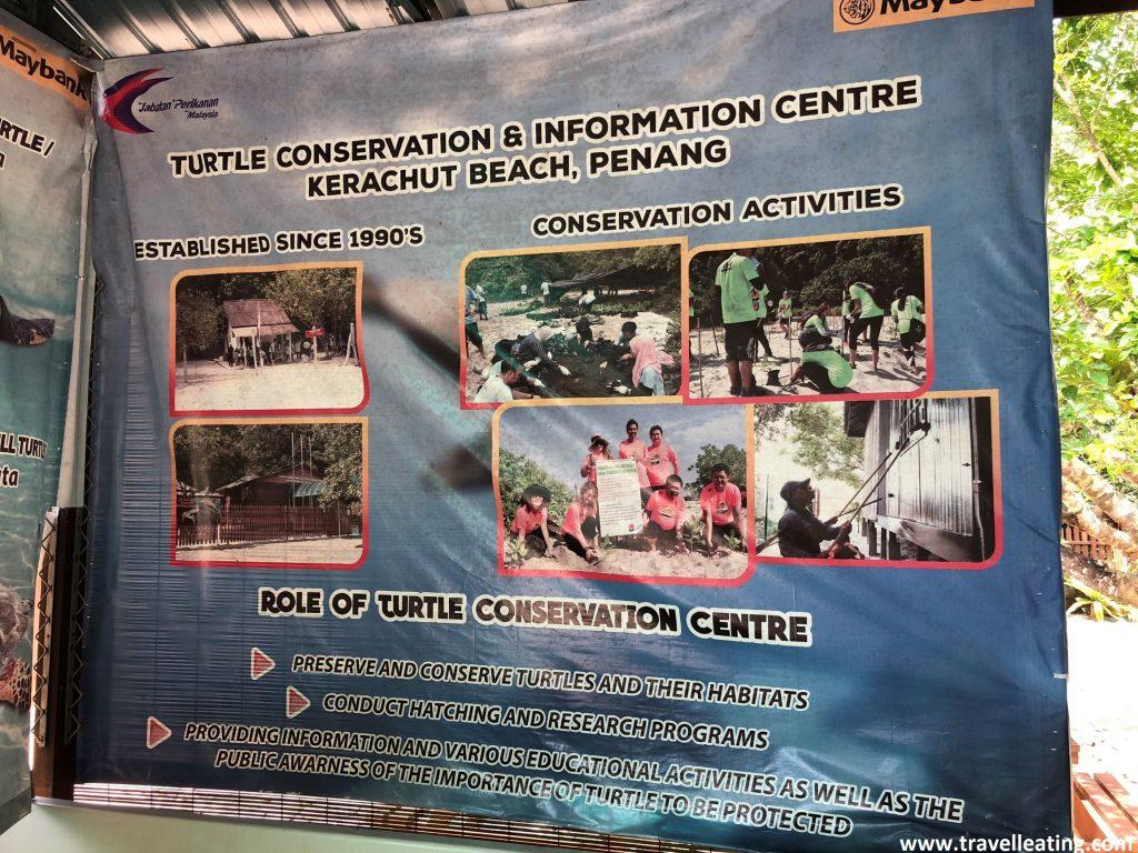 Turtle Conservation & Information Centre de Kerachut Beach.