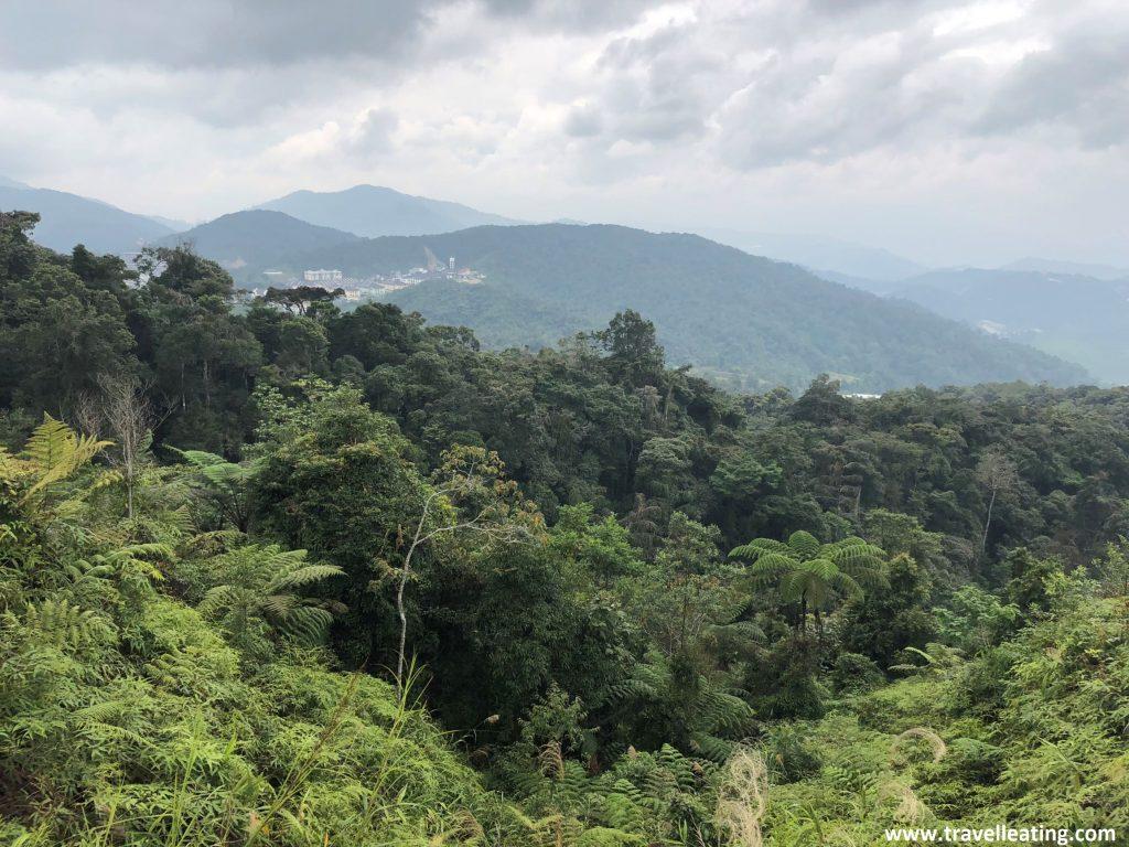 Vistas des del Gunung Jasar. Ruta de trekking por las Cameron Highlands.
