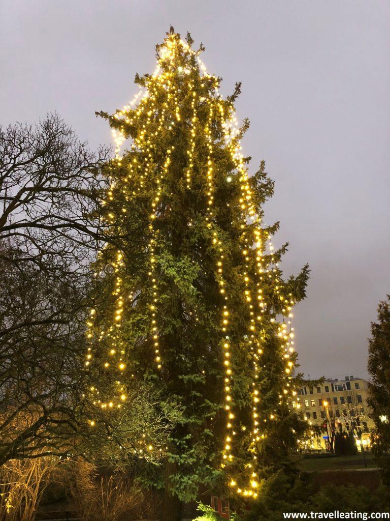Luces de Navidad todavía en febrero.