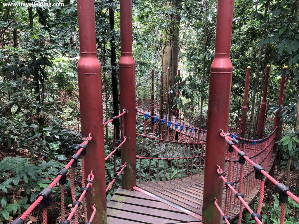 Puentes en el KL Fores Eco Park.