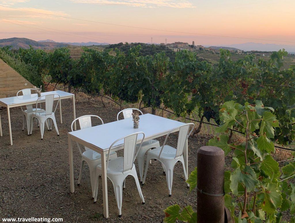 Terraza con cuatro mesas situada frente a la cocina común, con unas espectaculares vistas a los viñedos. El cielo está rojizo porque es el atardecer.