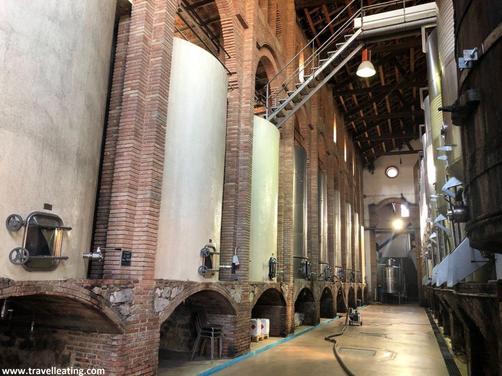 Bodega de la Catedral del Vino de Falset donde se ven en línea los recipientes en los que fermenta el vino.