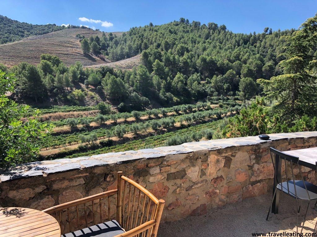 Mesas de una terraza situadas frente a un espectacular paisaje verde plagado de viñedos.