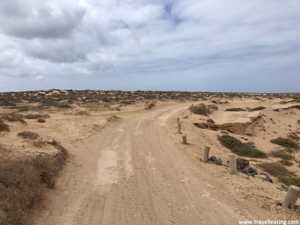 Camino de tierra entre dunas, una de las rutas más populares en bici por la Isla de la Graciosa.