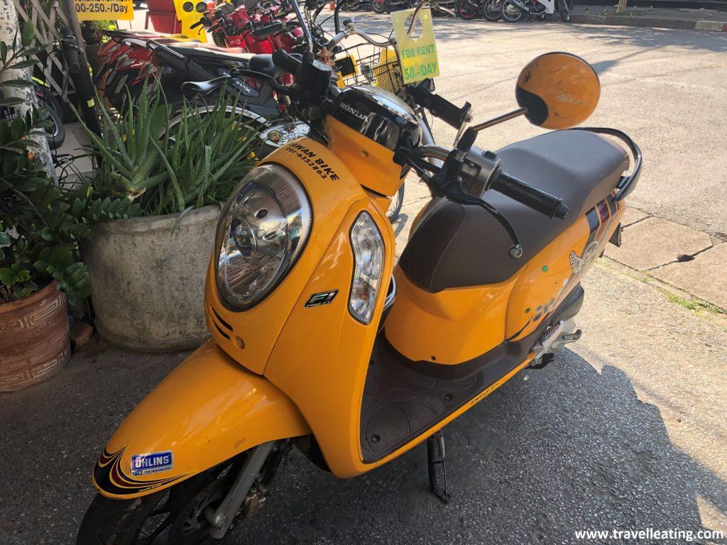 Moto amarilla con casco en un local de alquiler en Chiang Mai.