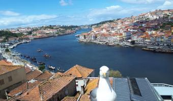 Preciosas vistas de Oporto tras el río Duero con el Puente Luis I. Uno de los imprescindibles de la ciudad.