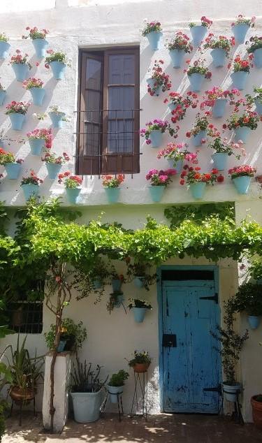 El patio del Hotel De Patios es uno de los patios de la ruta de patios cordobeses del Barrio de San Basilio.