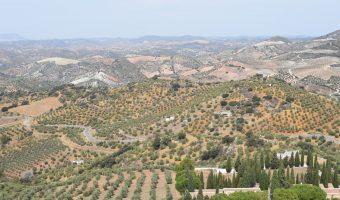 Espectacular paisaje de campos verdes y montañas.