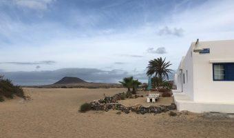 Casa blanca tradicional canaria con palmeras delante y un volcán al fondo.